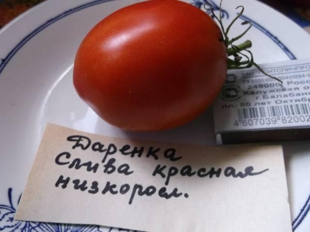 Daryonka